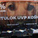 V Dobrom trolejbuse Únia vzájomnej pomoci ľudí a psov